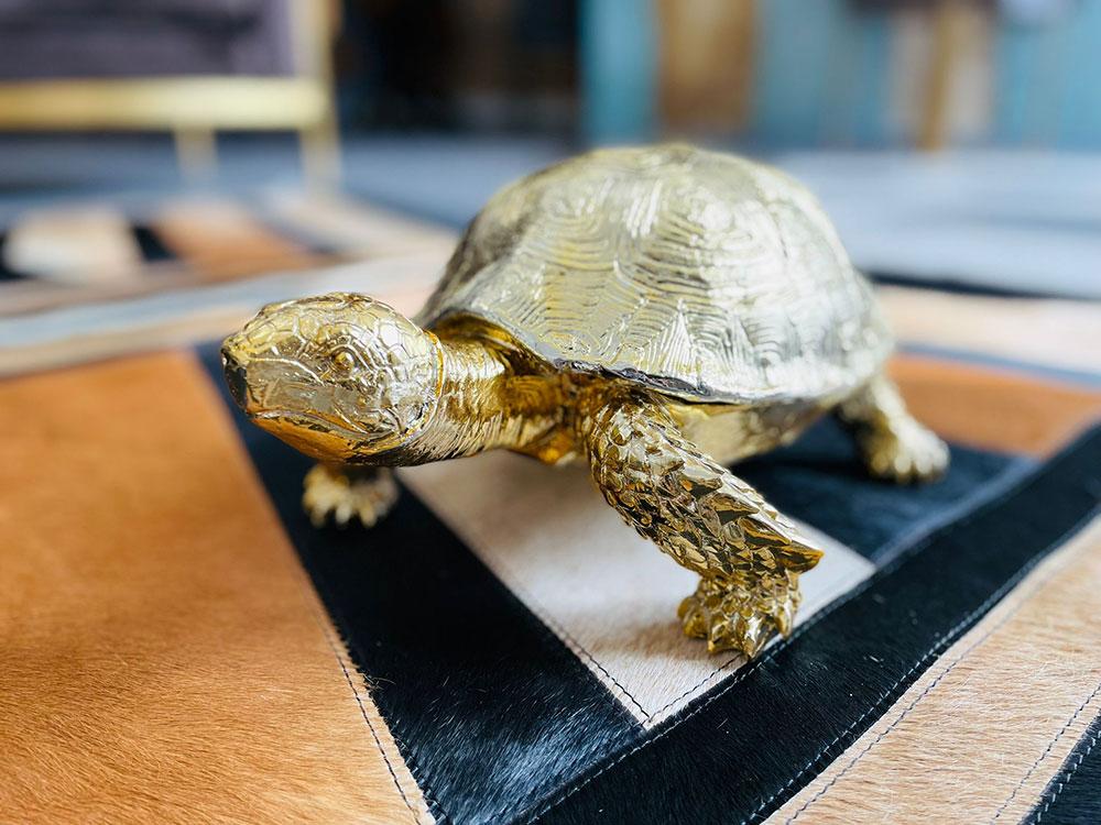 Aufbewahrungsdose Schildkröte